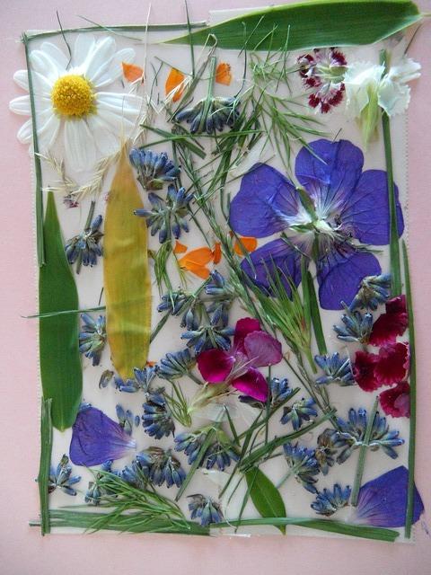 lisované květy